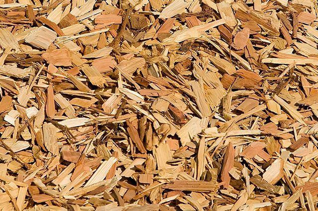 wood mulch on a playground
